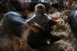 Boy shows off his pig at a 4'H event in Indiana