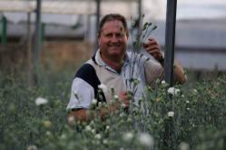 Italian man picks flowers