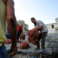 Italian fishermen in Naples