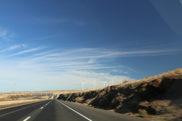 Windmills along Oregon road