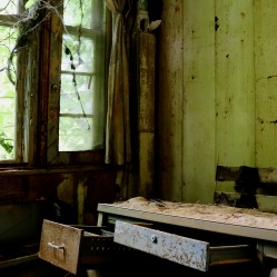 Forest Haven mental asylum office