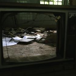 Forest Haven mental asylum